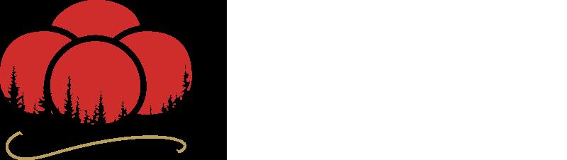 schwarzwald-medicalresort.de ❤️
